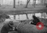 Image of Germans cutting trees for fuel in Berlin after World War 2 Berlin Germany, 1945, second 56 stock footage video 65675042630
