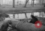 Image of Germans cutting trees for fuel in Berlin after World War 2 Berlin Germany, 1945, second 57 stock footage video 65675042630