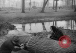 Image of Germans cutting trees for fuel in Berlin after World War 2 Berlin Germany, 1945, second 61 stock footage video 65675042630