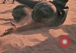 Image of hand to hand combat Vietnam, 1970, second 44 stock footage video 65675042677