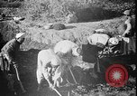 Image of Egyptian workers Hermopolis Egypt, 1930, second 17 stock footage video 65675042733