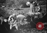 Image of Egyptian workers Hermopolis Egypt, 1930, second 19 stock footage video 65675042733