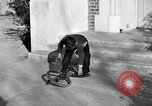 Image of unicycle Los Angeles California USA, 1933, second 62 stock footage video 65675042743