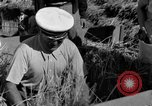 Image of Benito Mussolini Italy, 1935, second 31 stock footage video 65675042761