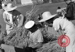Image of Benito Mussolini Italy, 1935, second 32 stock footage video 65675042761