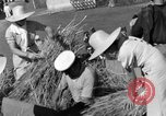 Image of Benito Mussolini Italy, 1935, second 33 stock footage video 65675042761