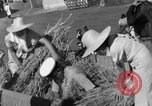 Image of Benito Mussolini Italy, 1935, second 34 stock footage video 65675042761