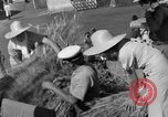 Image of Benito Mussolini Italy, 1935, second 35 stock footage video 65675042761