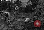 Image of mining gold Ward Colorado USA, 1935, second 20 stock footage video 65675042762