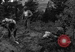 Image of mining gold Ward Colorado USA, 1935, second 21 stock footage video 65675042762
