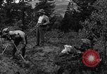Image of mining gold Ward Colorado USA, 1935, second 22 stock footage video 65675042762