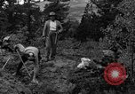 Image of mining gold Ward Colorado USA, 1935, second 23 stock footage video 65675042762