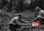 Image of mining gold Ward Colorado USA, 1935, second 29 stock footage video 65675042762