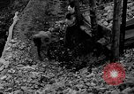 Image of mining gold Ward Colorado USA, 1935, second 48 stock footage video 65675042762