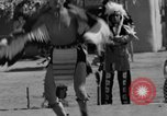 Image of Red Indians San Diego California USA, 1935, second 45 stock footage video 65675042769