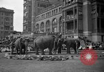 Image of Ringling Brothers Barnum and Bailey circus New York United States USA, 1936, second 14 stock footage video 65675042780