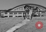 Image of ice covered slide Venice Beach Los Angeles California USA, 1938, second 14 stock footage video 65675042786