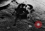 Image of Lunar Excursion Module 1 or LM-1 for Apollo United States USA, 1967, second 7 stock footage video 65675042818