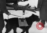 Image of avalanche rescue Bludenz Austria, 1954, second 24 stock footage video 65675042922