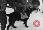 Image of avalanche rescue Bludenz Austria, 1954, second 25 stock footage video 65675042922
