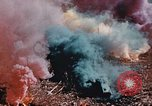 Image of colored smoke grenades United States USA, 1945, second 50 stock footage video 65675042930