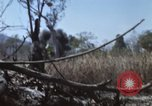 Image of 1st Australian task force South Vietnam, 1968, second 13 stock footage video 65675042955