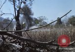 Image of 1st Australian task force South Vietnam, 1968, second 14 stock footage video 65675042955