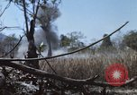 Image of 1st Australian task force South Vietnam, 1968, second 15 stock footage video 65675042955