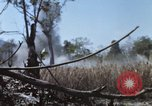 Image of 1st Australian task force South Vietnam, 1968, second 16 stock footage video 65675042955