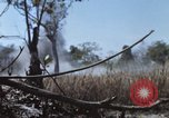Image of 1st Australian task force South Vietnam, 1968, second 17 stock footage video 65675042955