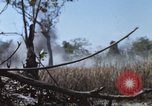 Image of 1st Australian task force South Vietnam, 1968, second 18 stock footage video 65675042955
