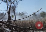 Image of 1st Australian task force South Vietnam, 1968, second 20 stock footage video 65675042955