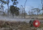 Image of 1st Australian task force South Vietnam, 1968, second 23 stock footage video 65675042955