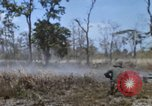 Image of 1st Australian task force South Vietnam, 1968, second 24 stock footage video 65675042955