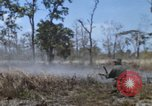 Image of 1st Australian task force South Vietnam, 1968, second 26 stock footage video 65675042955