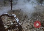 Image of 1st Australian task force South Vietnam, 1968, second 30 stock footage video 65675042955