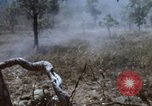 Image of 1st Australian task force South Vietnam, 1968, second 33 stock footage video 65675042955