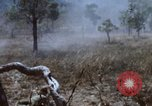 Image of 1st Australian task force South Vietnam, 1968, second 35 stock footage video 65675042955