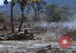 Image of 1st Australian task force South Vietnam, 1968, second 39 stock footage video 65675042955