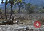 Image of 1st Australian task force South Vietnam, 1968, second 46 stock footage video 65675042955