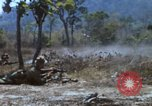 Image of 1st Australian task force South Vietnam, 1968, second 48 stock footage video 65675042955