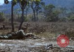 Image of 1st Australian task force South Vietnam, 1968, second 50 stock footage video 65675042955
