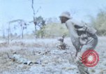 Image of 1st Australian task force South Vietnam, 1968, second 57 stock footage video 65675042955