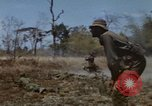 Image of 1st Australian task force South Vietnam, 1968, second 58 stock footage video 65675042955