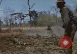Image of 1st Australian task force South Vietnam, 1968, second 59 stock footage video 65675042955