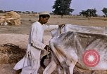 Image of Indian village India, 1956, second 20 stock footage video 65675043053