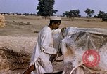Image of Indian village India, 1956, second 21 stock footage video 65675043053
