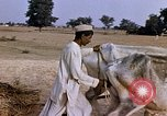 Image of Indian village India, 1956, second 22 stock footage video 65675043053