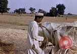 Image of Indian village India, 1956, second 23 stock footage video 65675043053