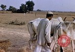 Image of Indian village India, 1956, second 25 stock footage video 65675043053